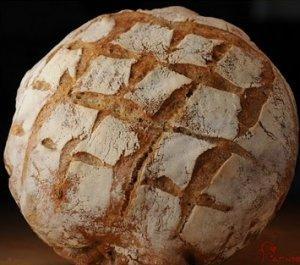 san fransico style sourdough bread